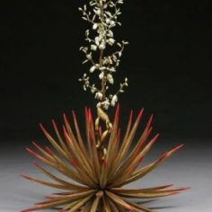 porcelain Yucca plant with long stem coming out of the middle.