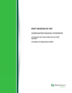 book thumbnail Mint Museum of Art Financials 2017-2018