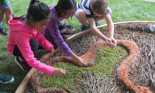 Children use natural materials to create a work of art with local artsits Crista Comarotto